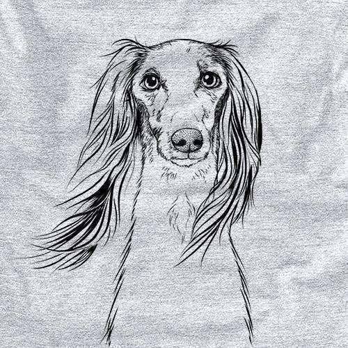 Zahra the Saluki