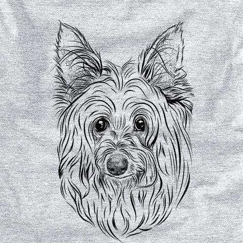 Daisy May the Silky Terrier