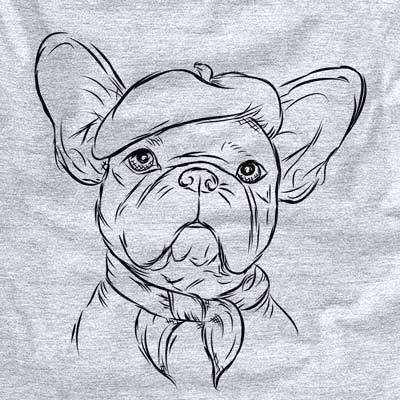 Pierre the French Bulldog