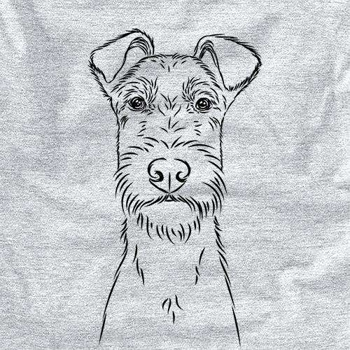 Connor the Irish Terrier