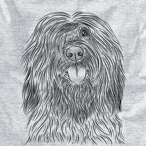 Bundy the Briard