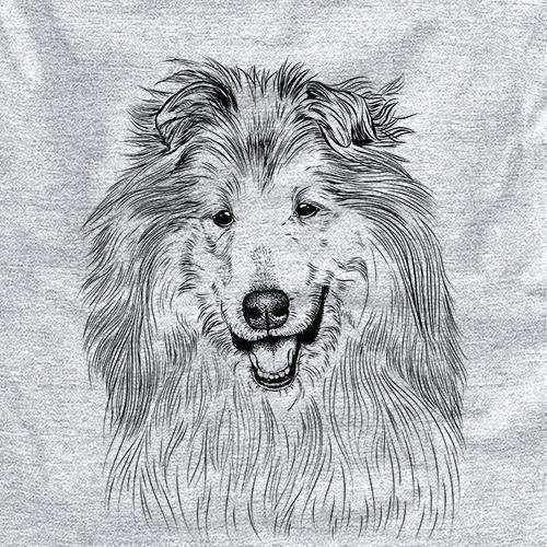Donnan the Rough Collie