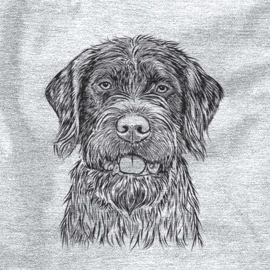 Fletcher the Wirehaired Pointing Griffon