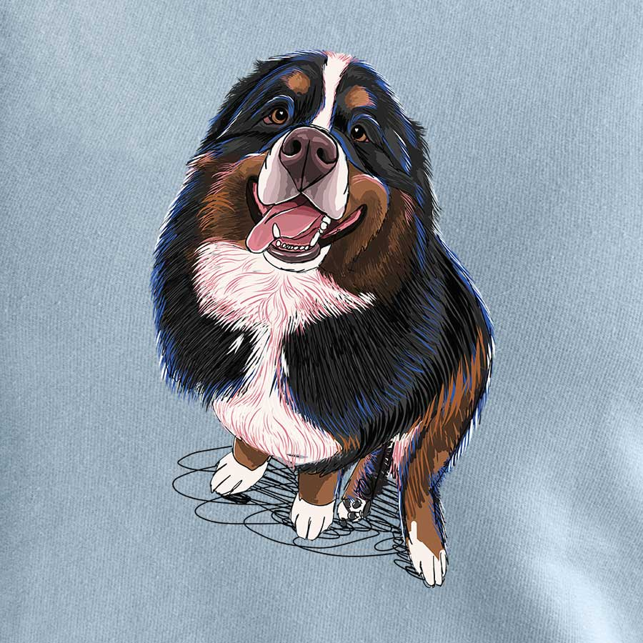 Bear the Bernese Mountain Dog