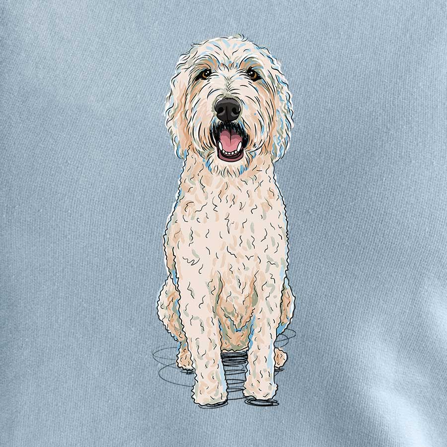 Franklin the Labradoodle
