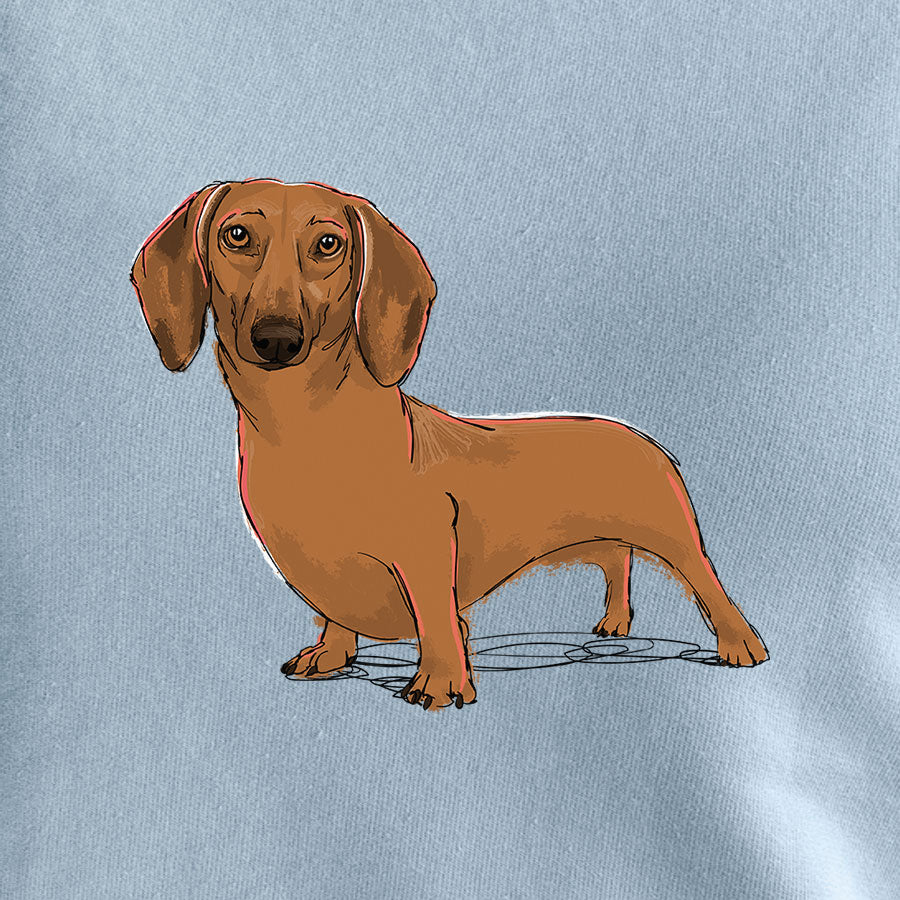 Freya the Dachshund