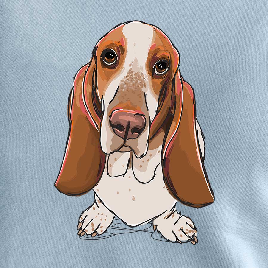 Herbie Lovebug the Basset Hound