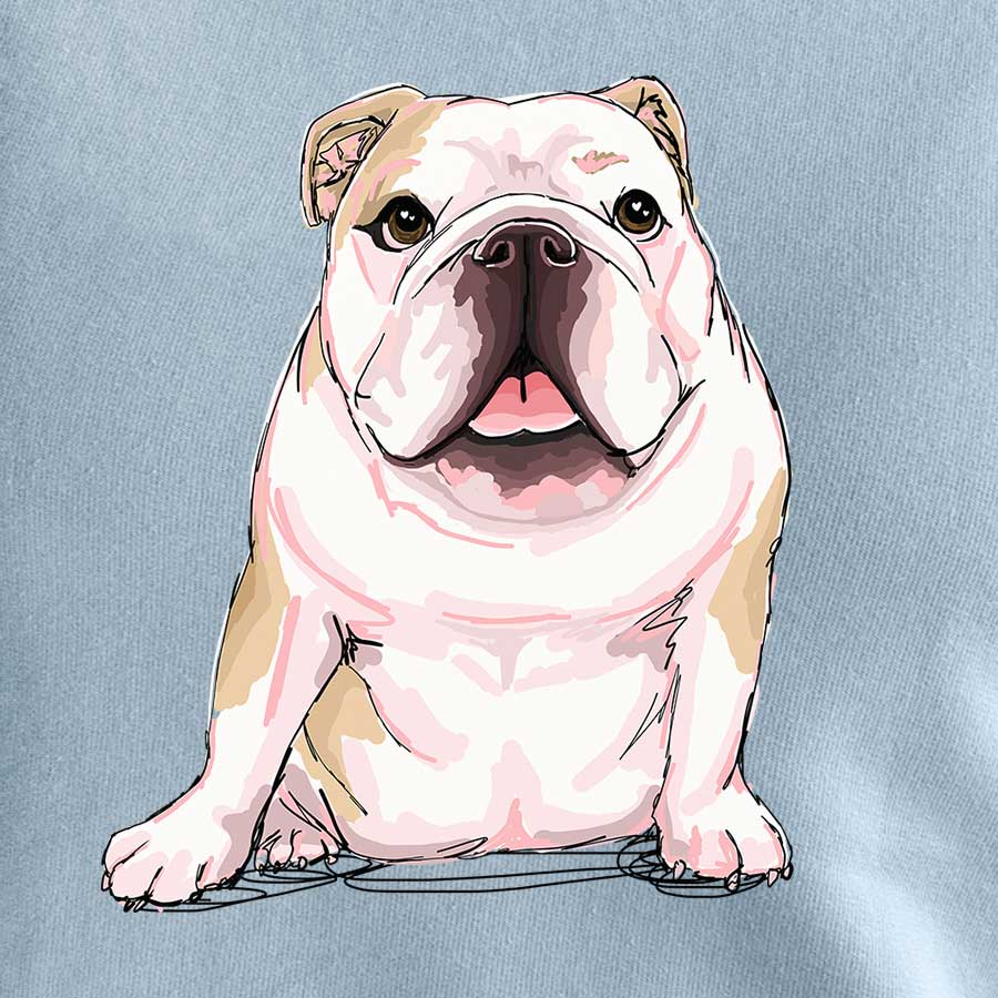 Penny the English Bulldog