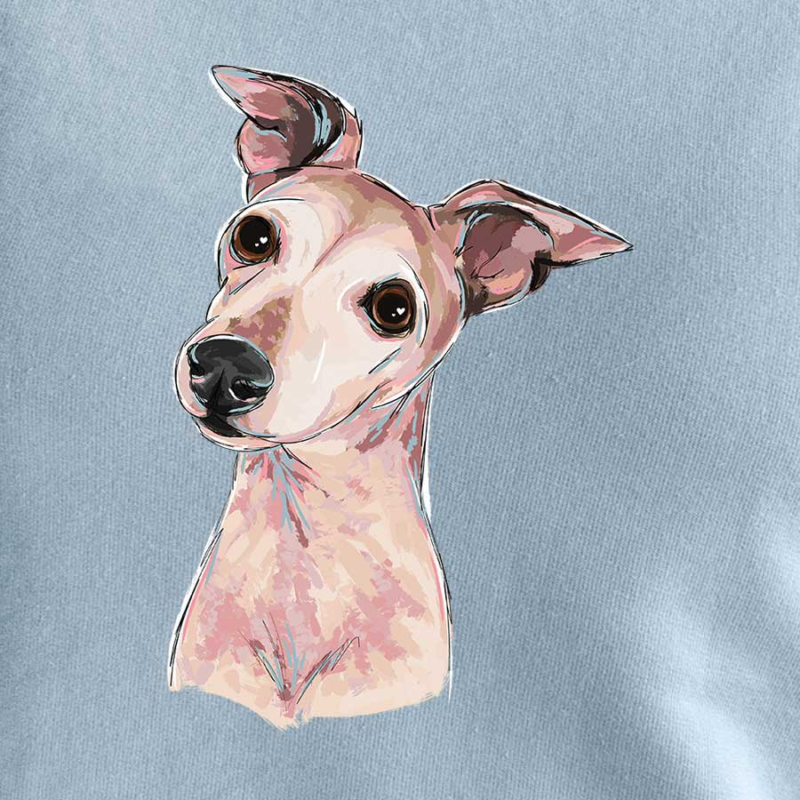 Riggs the Italian Greyhound