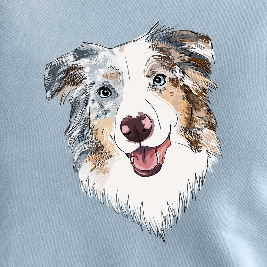 River the Australian Shepherd