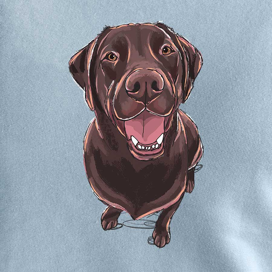 Winston the Chocolate Labrador