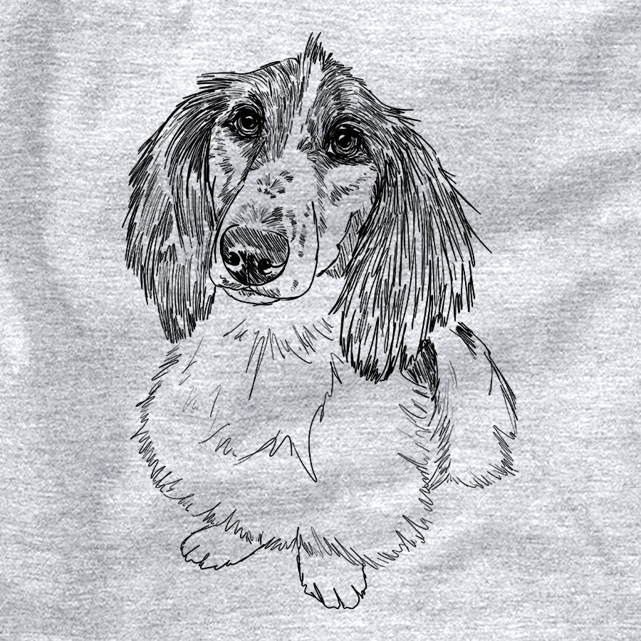 Doodled Bella the Long-Haired Dachshund
