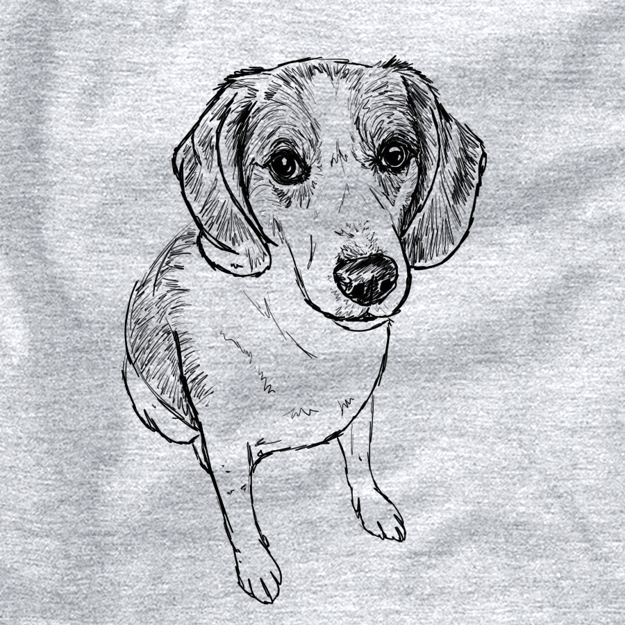 Doodled Duke the Beagle/Walker Hound Mix