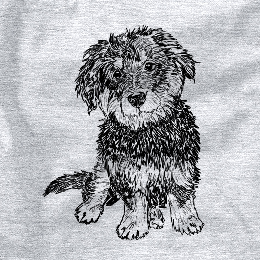 Doodled Remy the Mini Bernedoodle