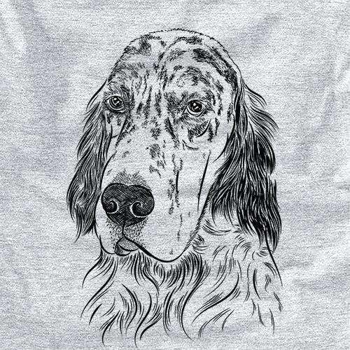 Hutch the English Setter