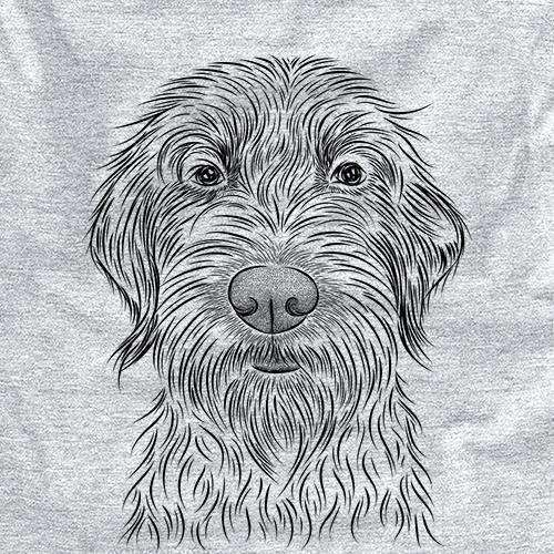 Wilkins the Wirehaired Pointing Griffon