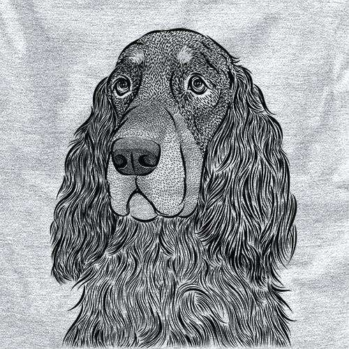 Stormy the Gordon Setter