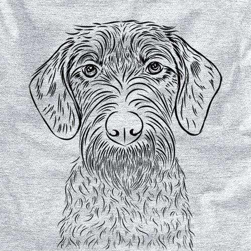 Gus the German Wirehaired Pointer