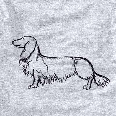 Halftone Long Haired Dachshund