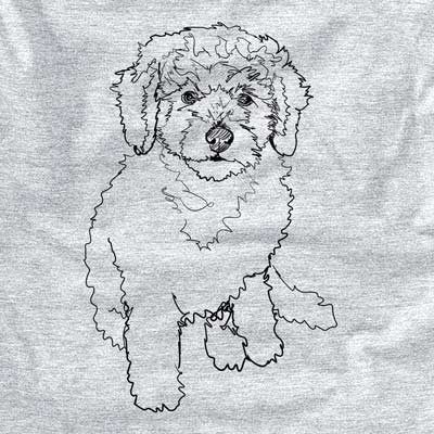 Doodled Puff the Labradoodle Puppy