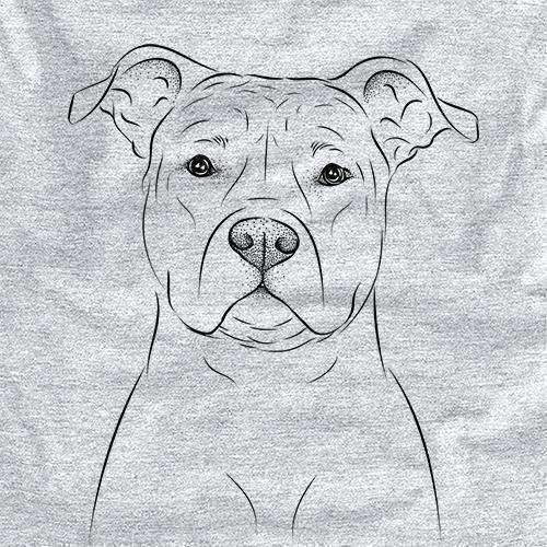 Jethro the American Staffordshire Terrier