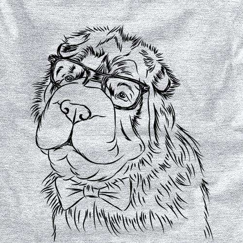 Einstein the Bear Coat Shar Pei