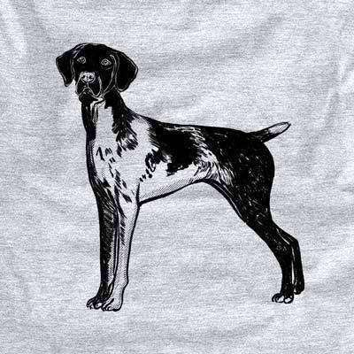 Halftone Docked German Shorthaired Pointer