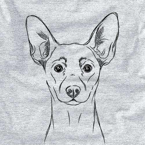Chillie the Mini Pinscher