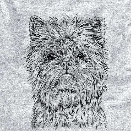 Alvin the Affenpinscher