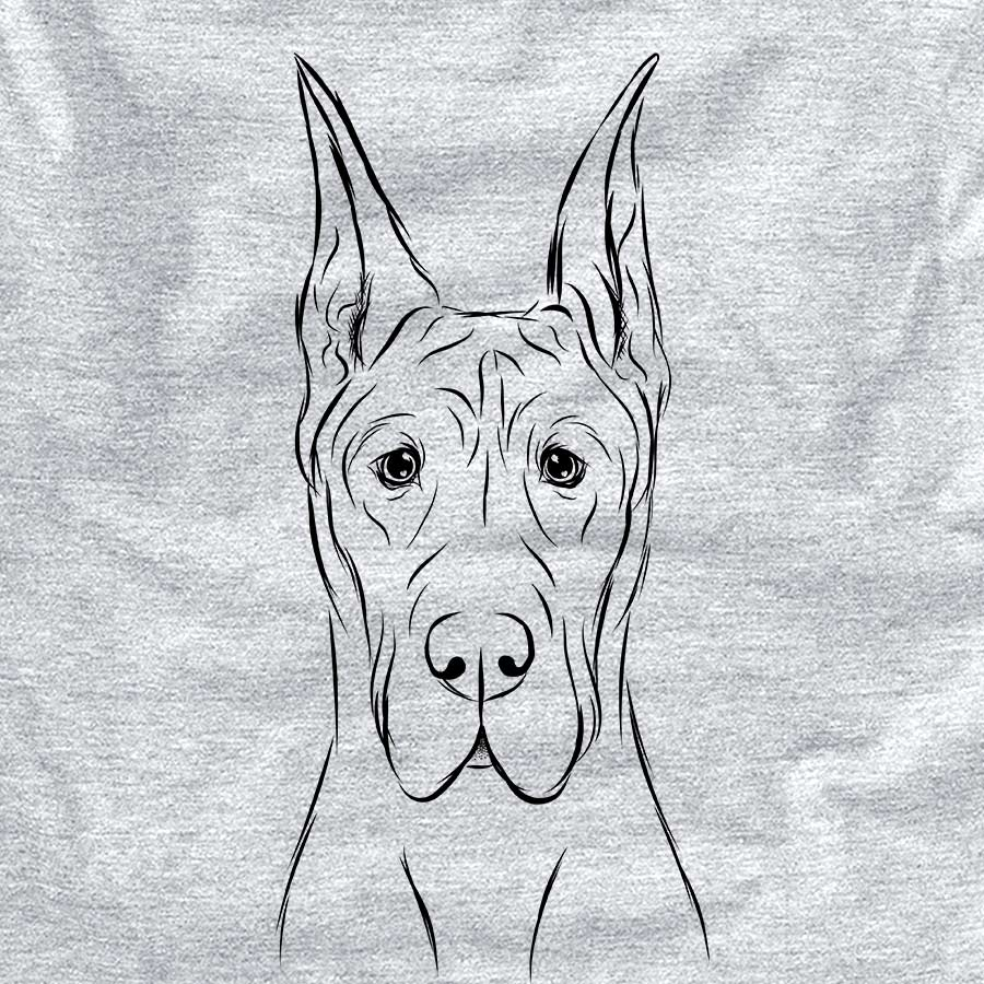 Jude the Great Dane