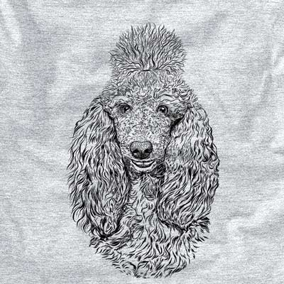 Kenna the Standard Poodle