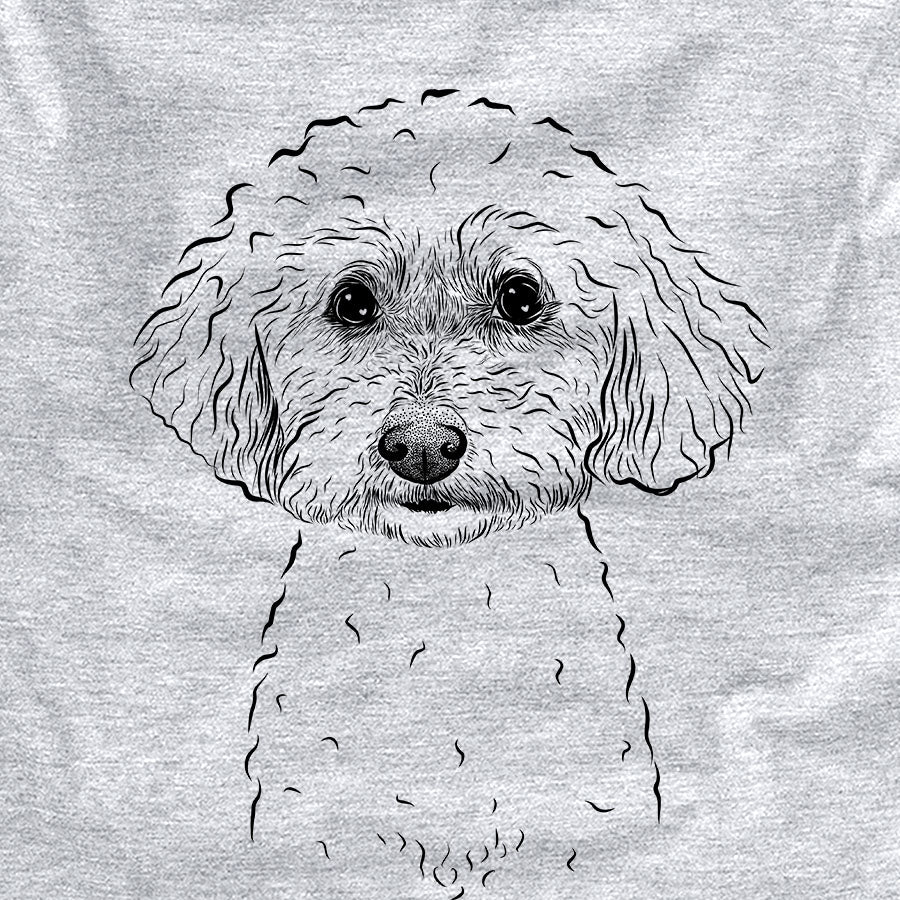 Stitch the Bichonpoo