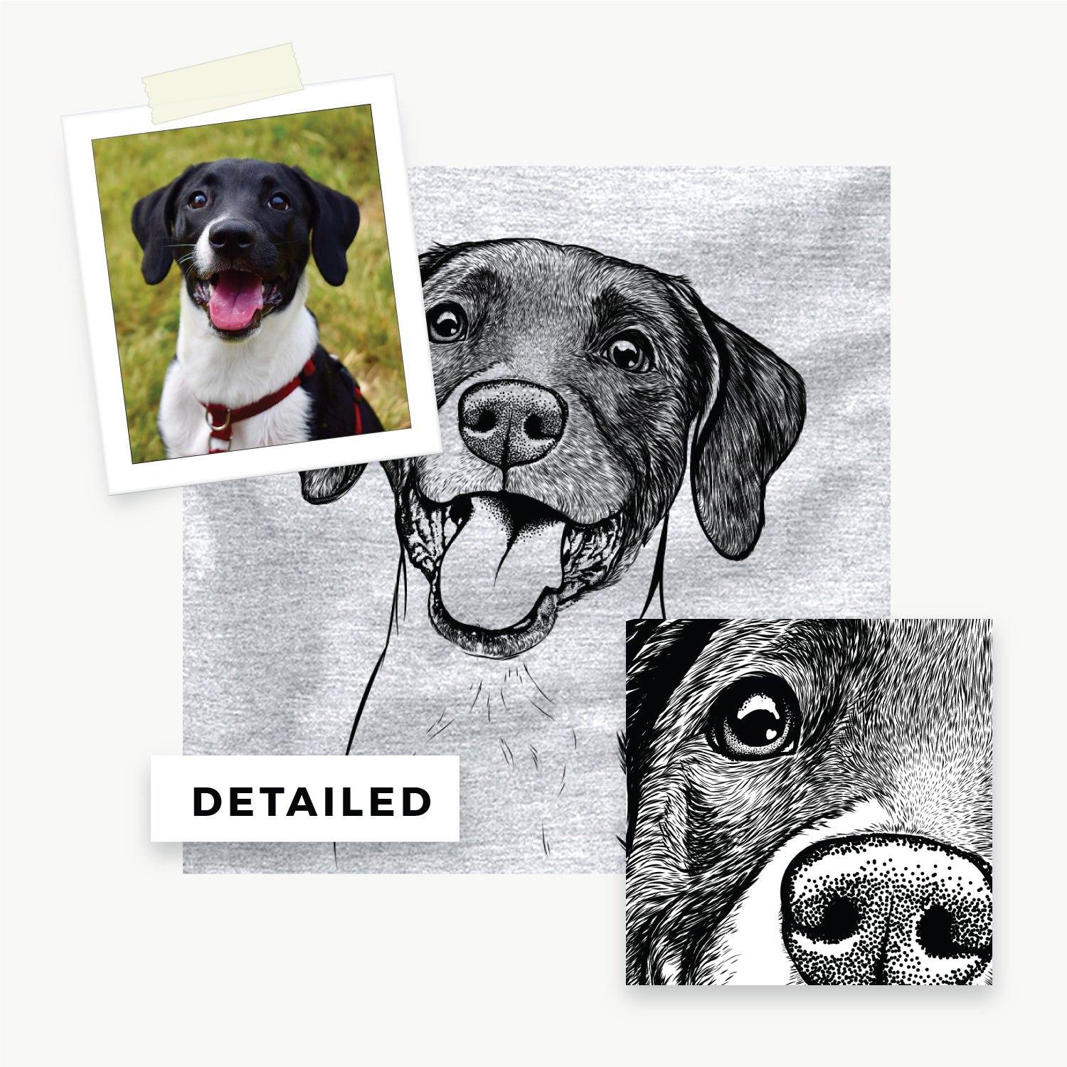 Your Pet Sketched and on a Shirt!