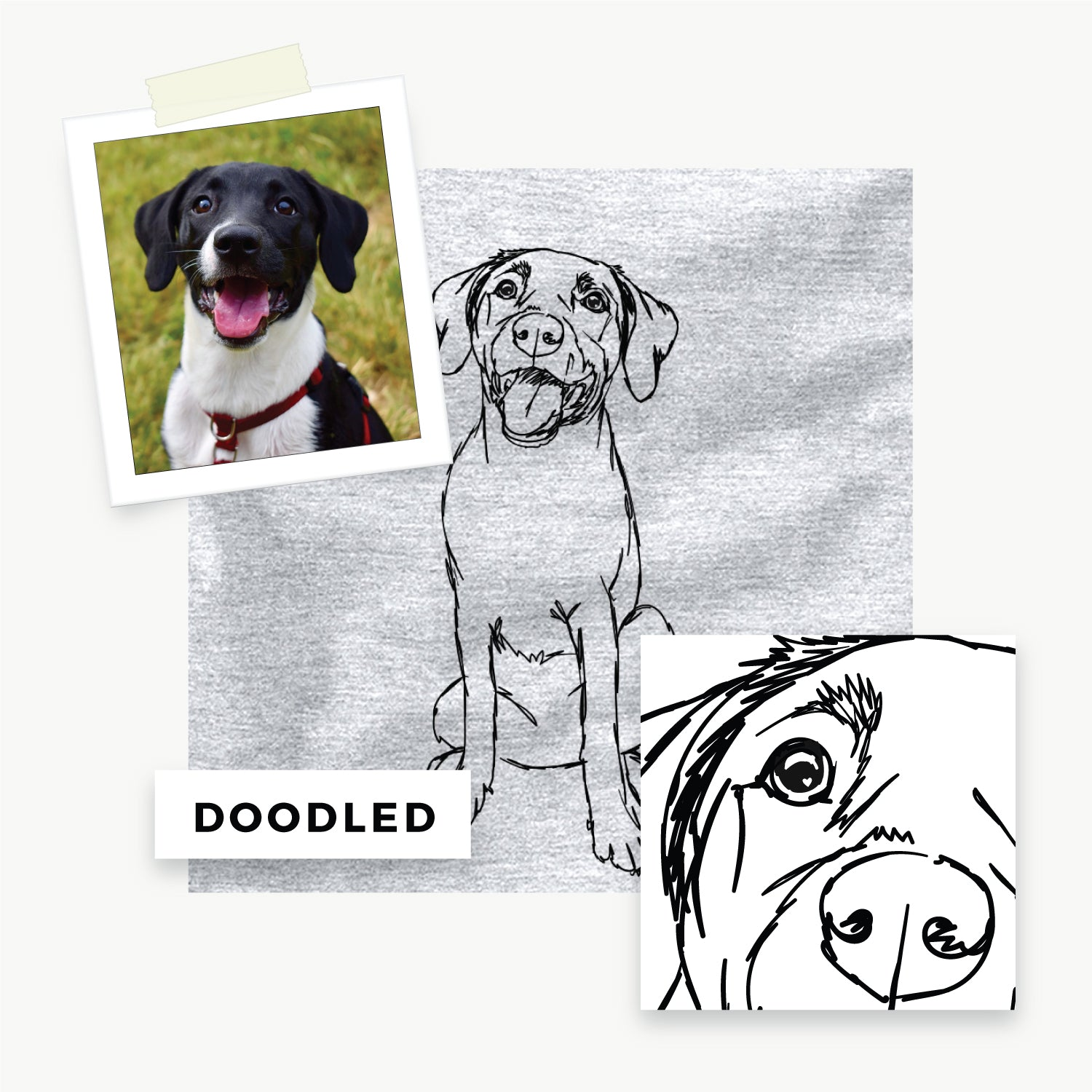 Your Pet Doodled and on a Shirt!
