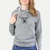 Abby the Boxer/Beagle Mix - French Terry Hooded Sweatshirt
