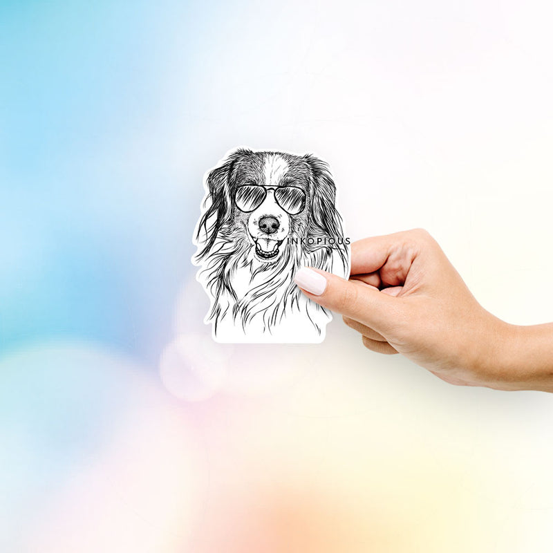 Rutger the Nederlandse Kooikerhondje - Decal Sticker