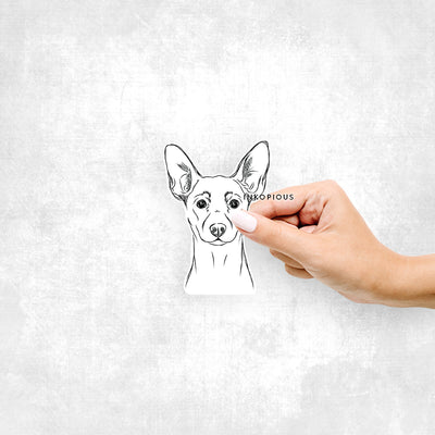 Chillie the Min Pin - Decal Sticker