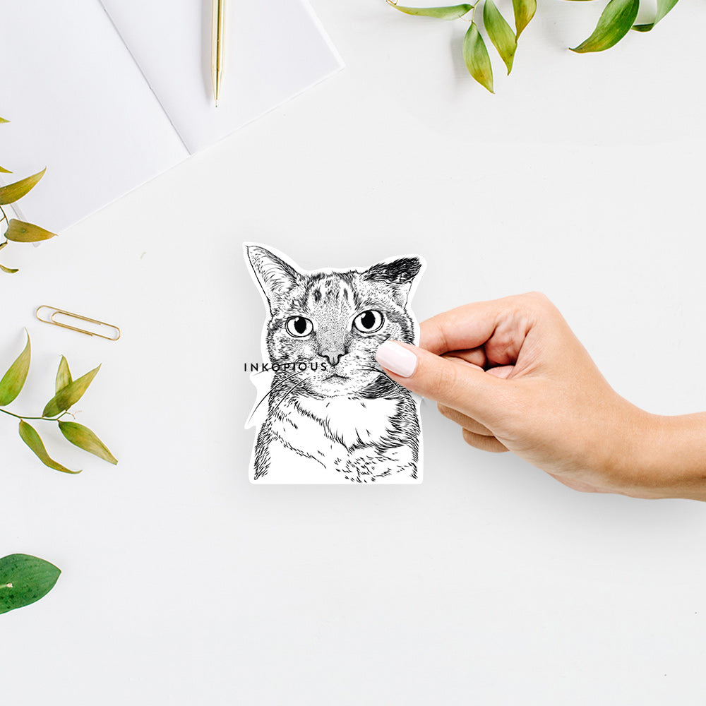 Eleanor the Domestic Shorthair - Decal Sticker