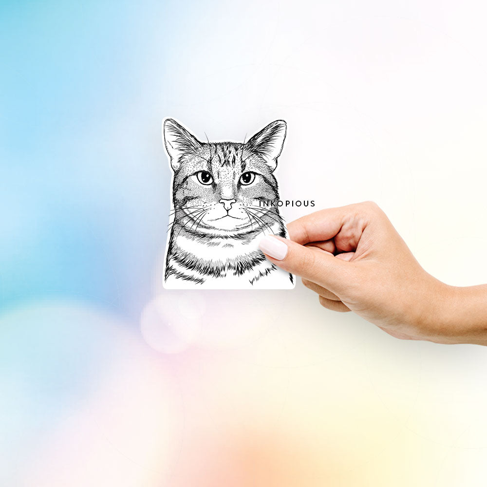Henry the Bengal Cat - Decal Sticker