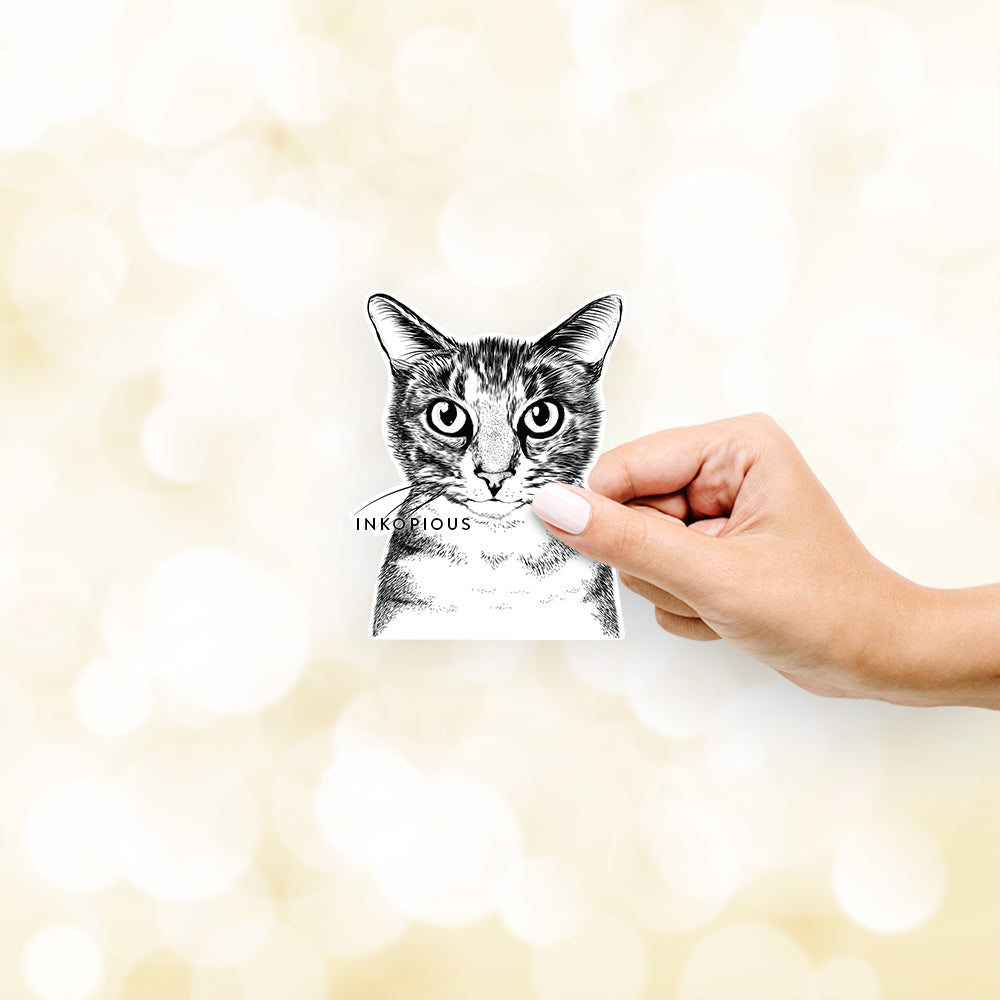 Hobbes the Tabby Cat - Decal Sticker