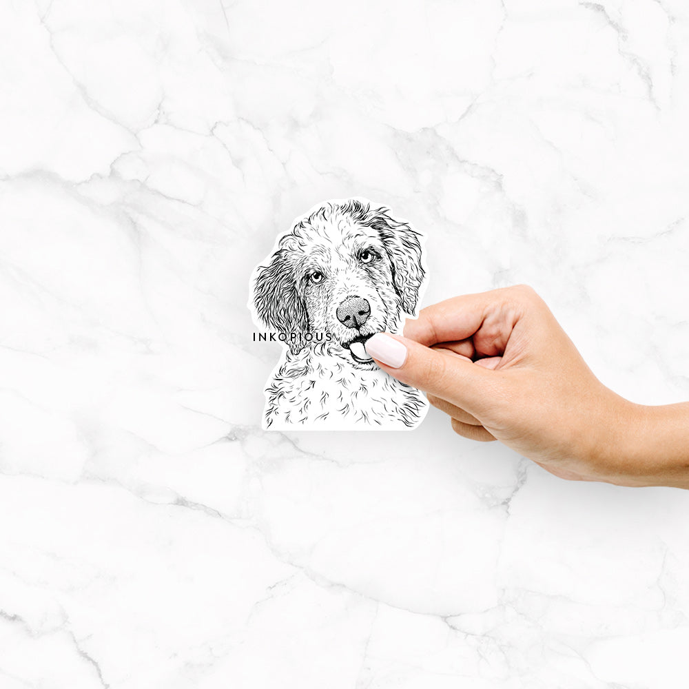 Hoge the Aussiedoodle - Decal Sticker