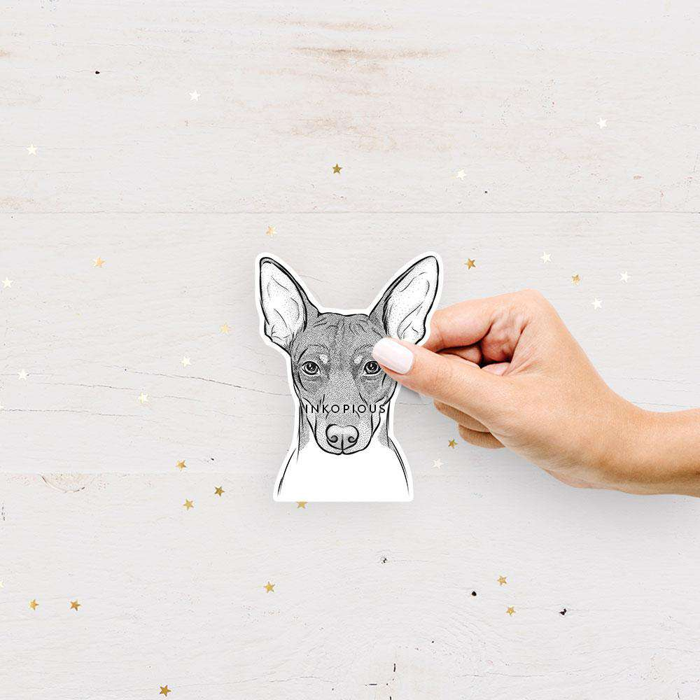 Knox the Rat Terrier - Decal Sticker