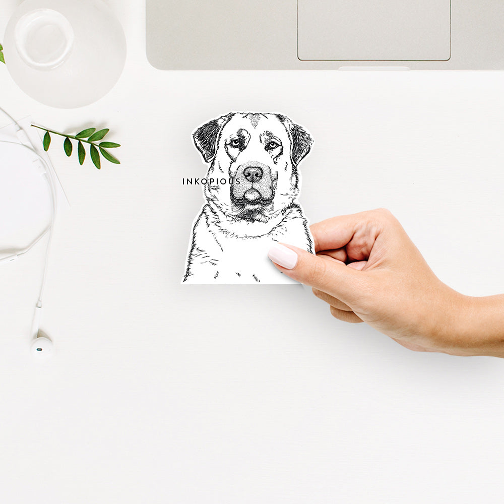 Loca the Anatolian Shepherd - Decal Sticker