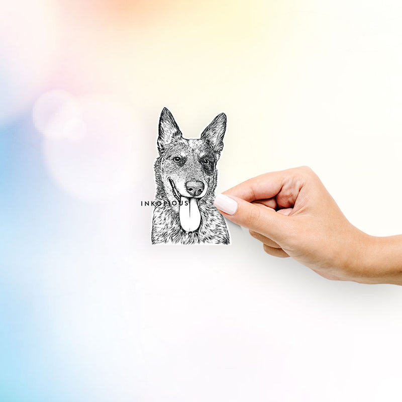 Madison the Blue Heeler - Decal Sticker