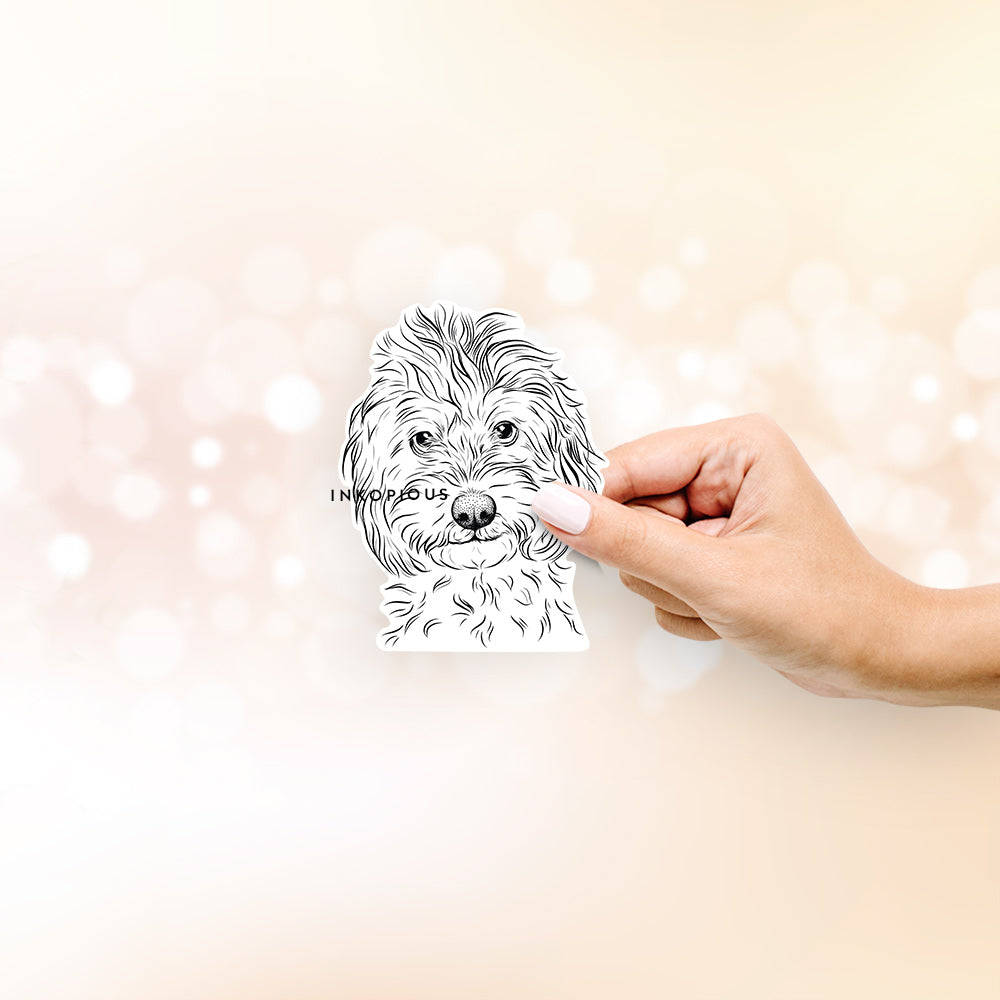 Mason the Cavapoo - Decal Sticker