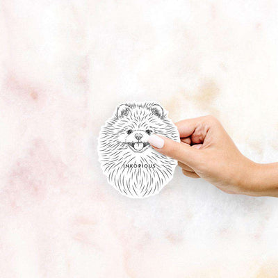 Pirro the Pomeranian - Decal Sticker