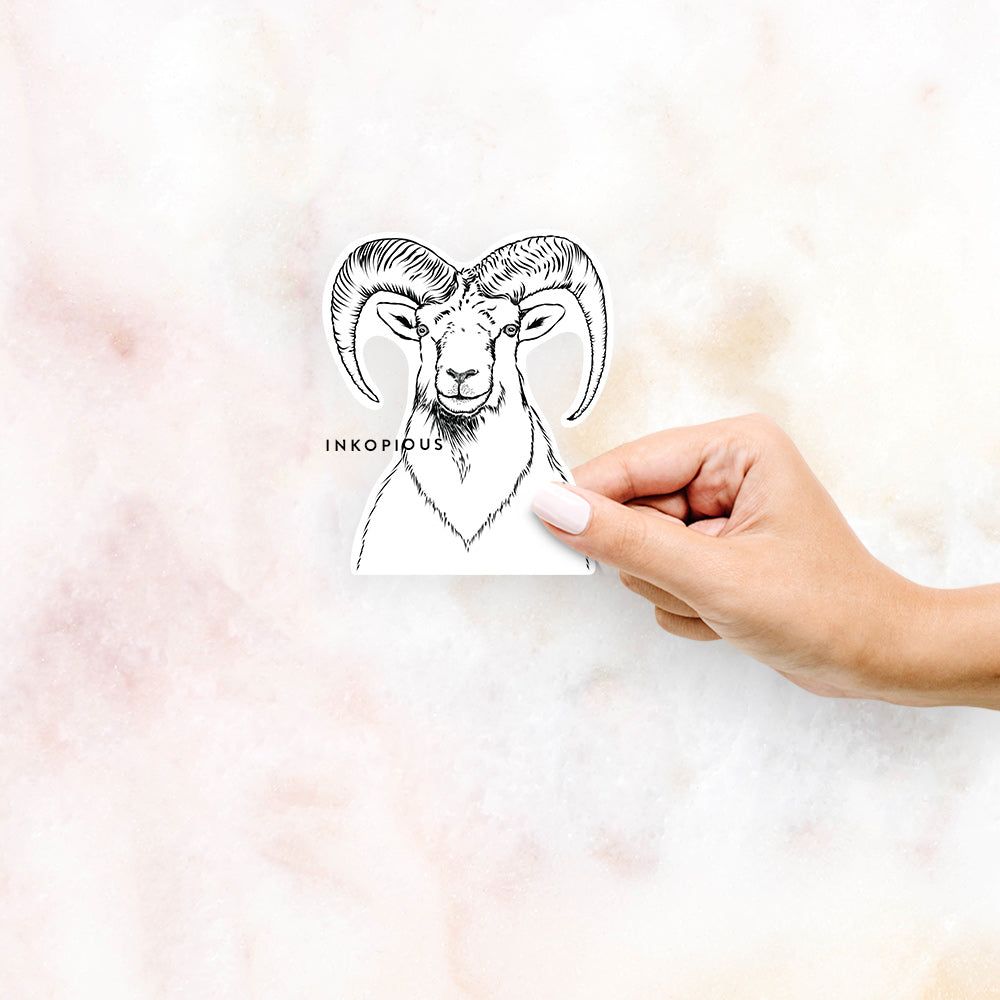 Rod the Ram - Decal Sticker