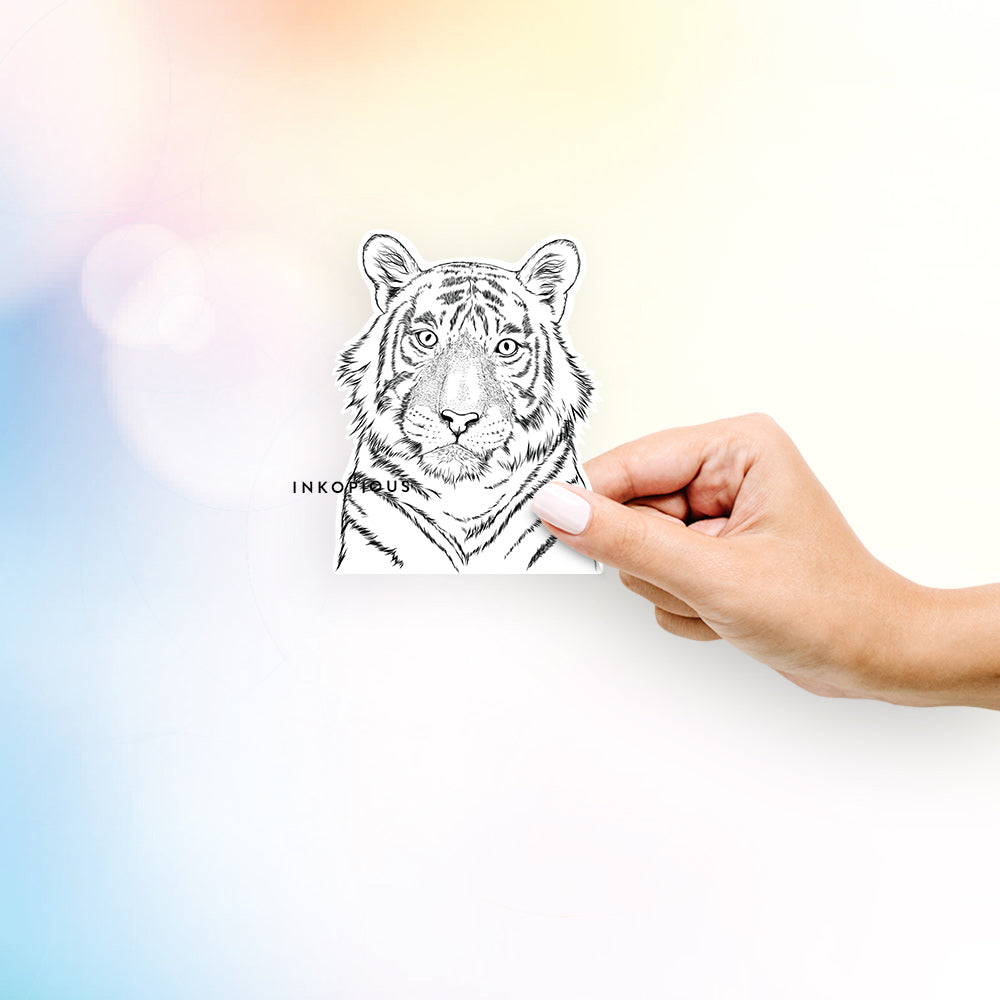 Wayne the Bengal Tiger - Decal Sticker