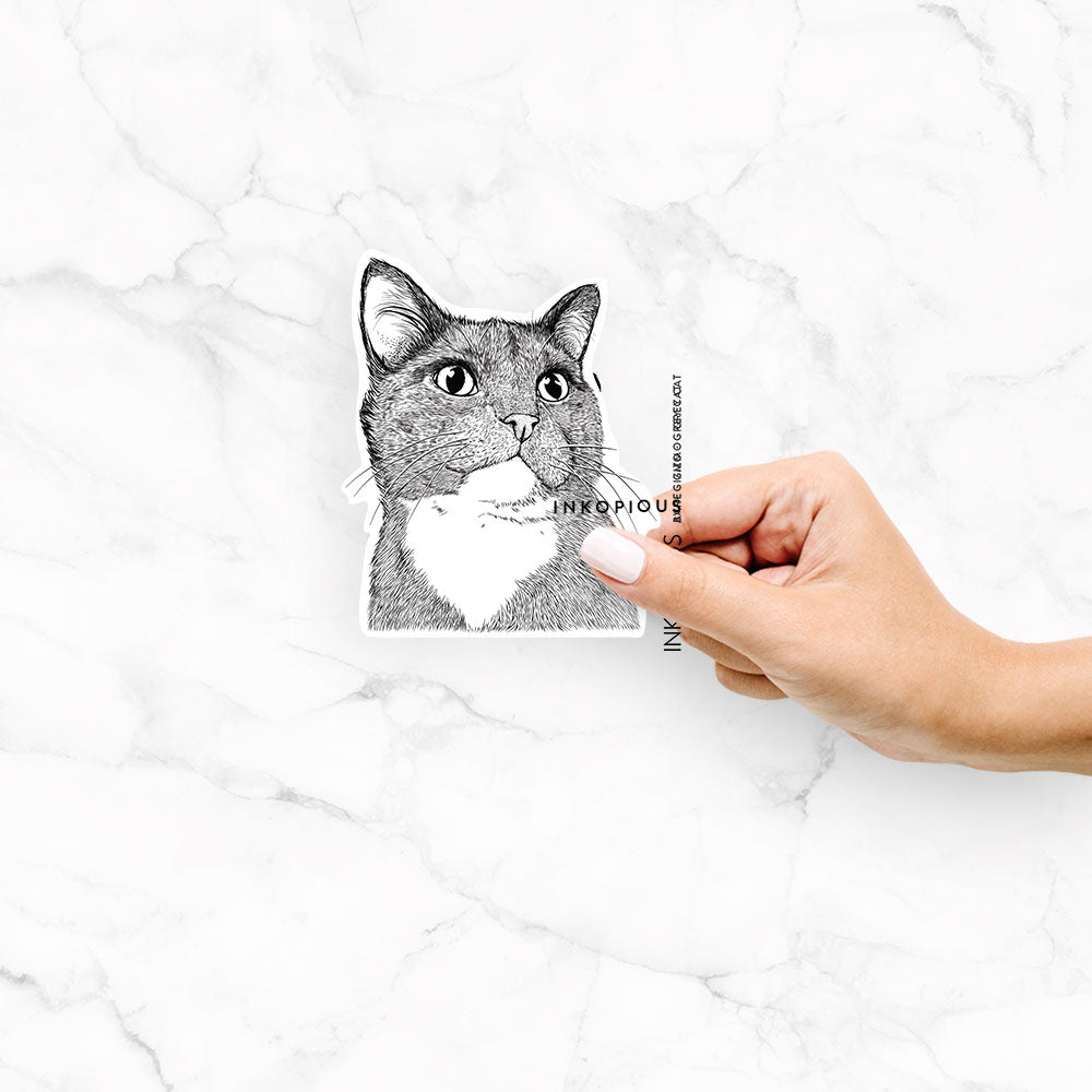 Gizmo the Grey Cat - Decal Sticker
