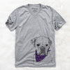 Champion Bentley the Boxer  - Unisex - Bandana Collection
